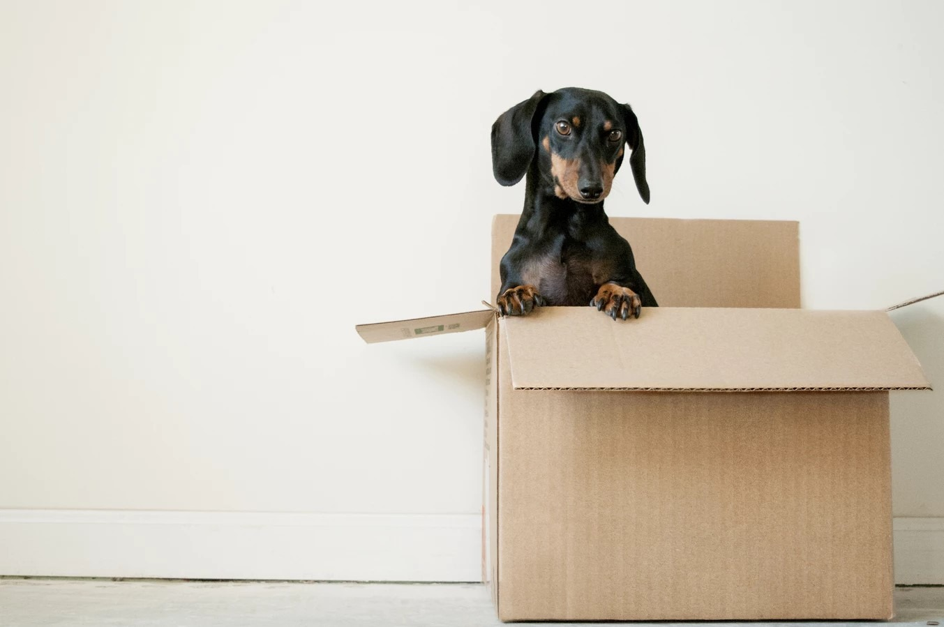 how to declutter before moving into a new house